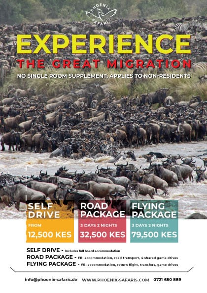 Phoenix Safaris Migration Offer